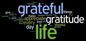 daily gratitude 5