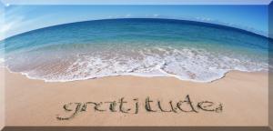 gratitude day 19