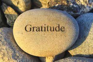gratitude day 20